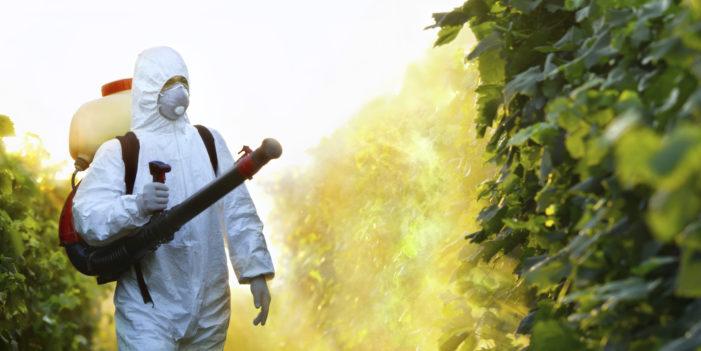 Pesticides, Birth Defects and Brain Damage in Children