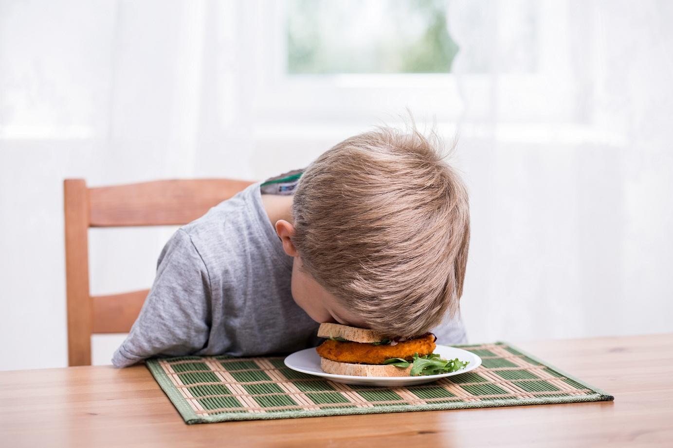 boy's face in sandwich