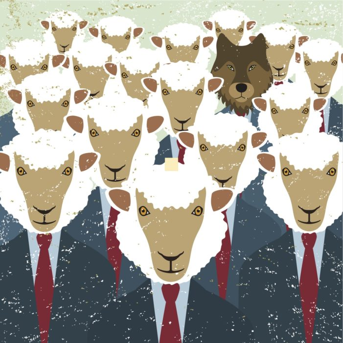This Herd Mentality is for the Birds