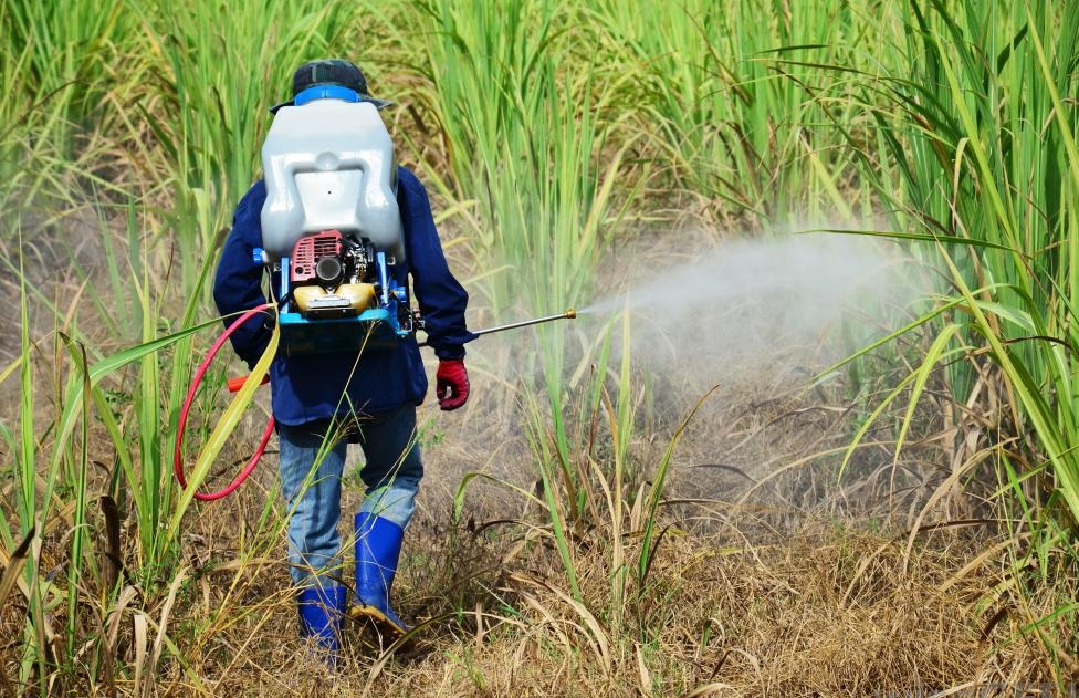 insecticide-spraying