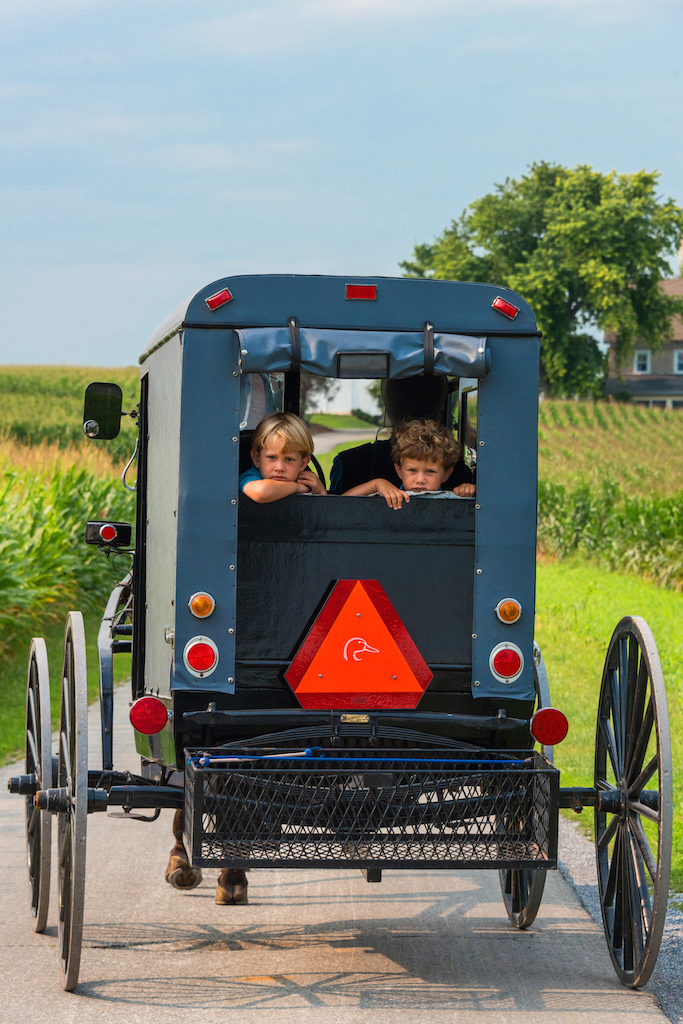 Amish Children to Be Denied an Education in New York